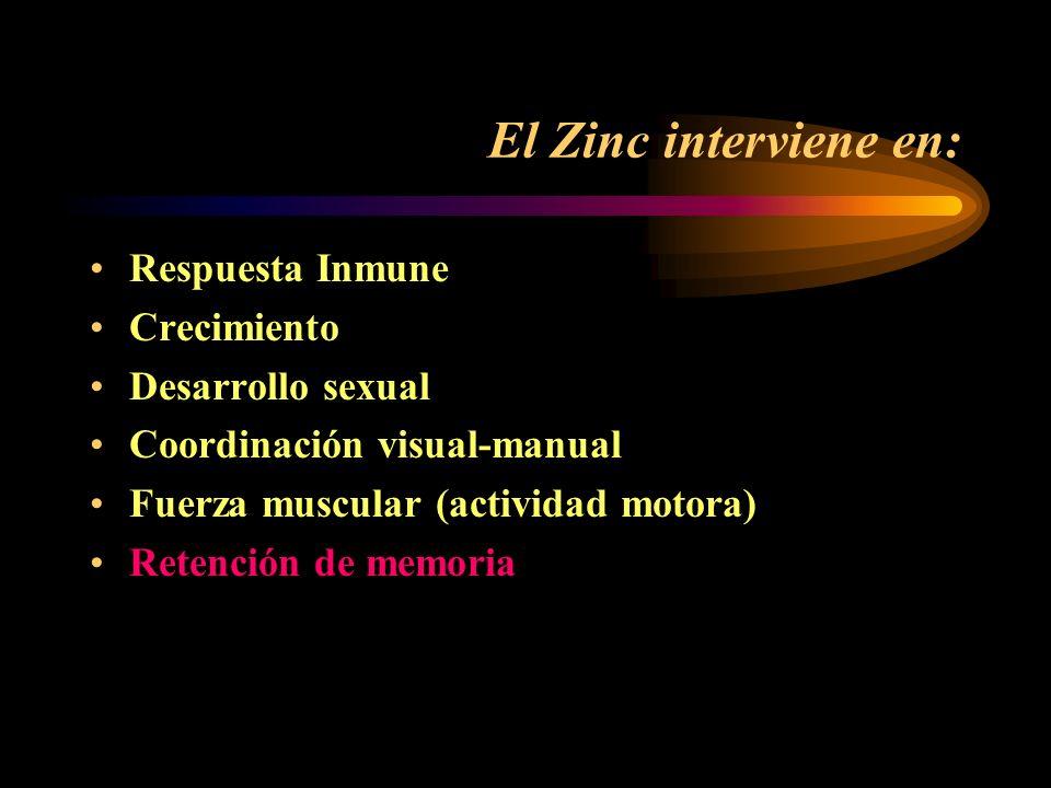 Zinc (Funciones) Es importante para el crecimiento celular Es catalizador de enzimas necesarias para la síntesis y catabolismo del RNA y el DNA. Modul