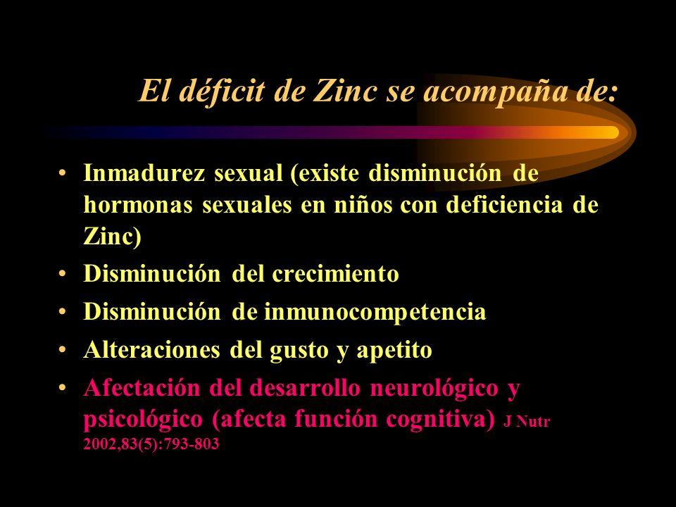 Zinc y Sistema Nervioso Central Las neurona glutaminérgica contienen Zinc Las vesículas sinápticas contenedoras de Zinc, regulan liberación de GABA La