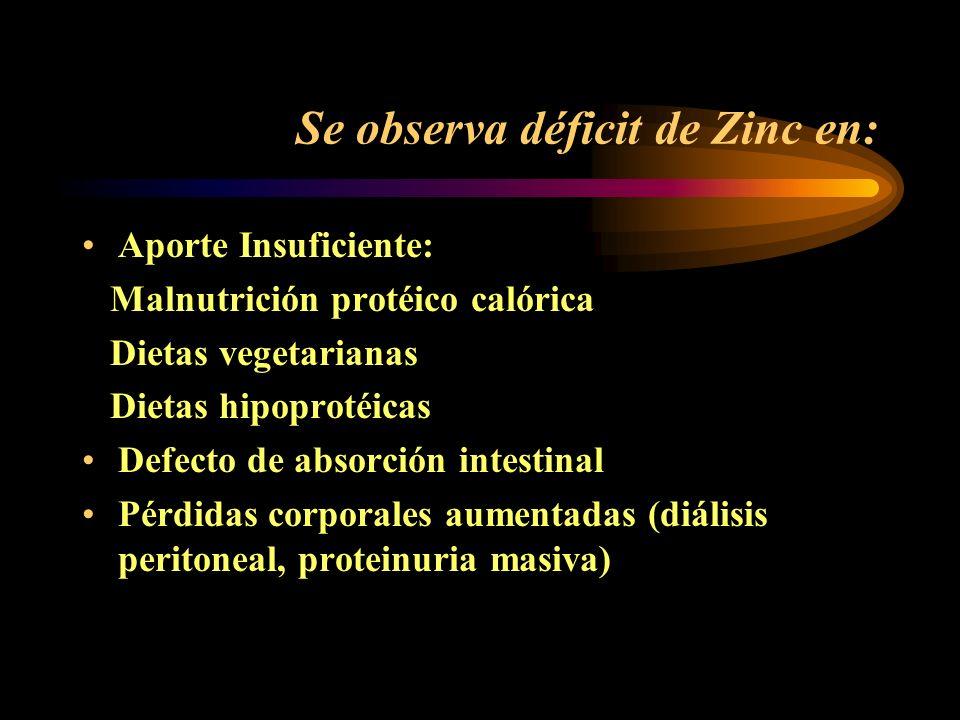 El déficit de Zinc se acompaña de: Inmadurez sexual (existe disminución de hormonas sexuales en niños con deficiencia de Zinc) Disminución del crecimi