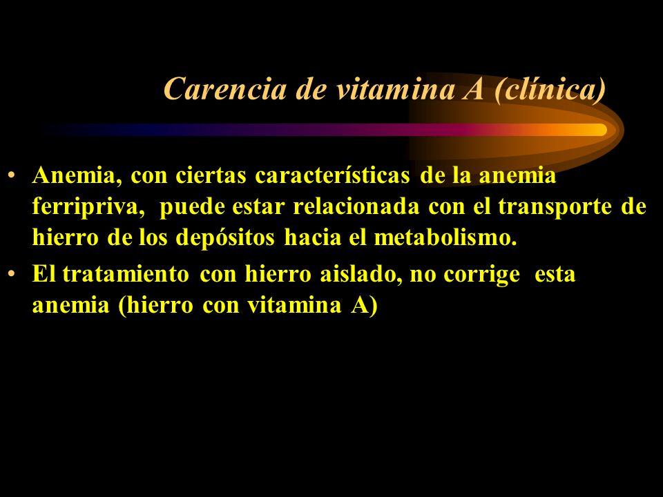 Carencia de vitamina A (clínica) Déficit más frecuente en menores de 6 años (rápido crecimiento, mayores necesidades) Piel seca, áspera Sensibilidad e