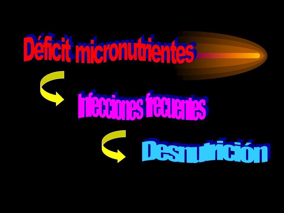 Desnutrición Proteico-calórica Déficit de Micronutrientes Disminución desarrollo cognitivo