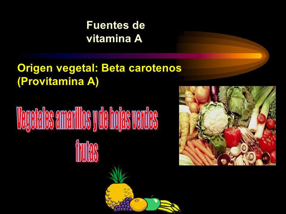 Fuentes de vitamina A Origen animal: (ya formada)