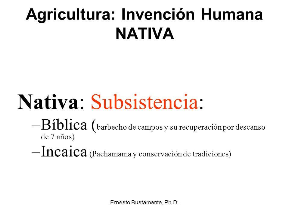 Agricultura: Invención Humana NATIVA Nativa: Subsistencia: –Bíblica ( barbecho de campos y su recuperación por descanso de 7 años) –Incaica (Pachamama