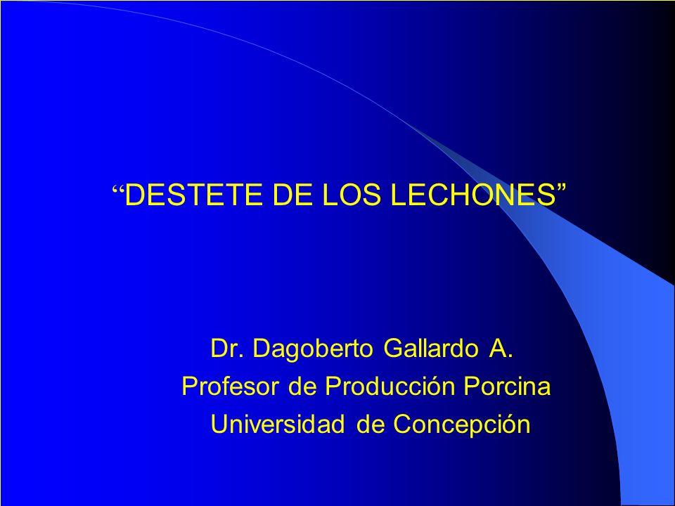 DESTETE DE LOS LECHONES Dr. Dagoberto Gallardo A. Profesor de Producción Porcina Universidad de Concepción
