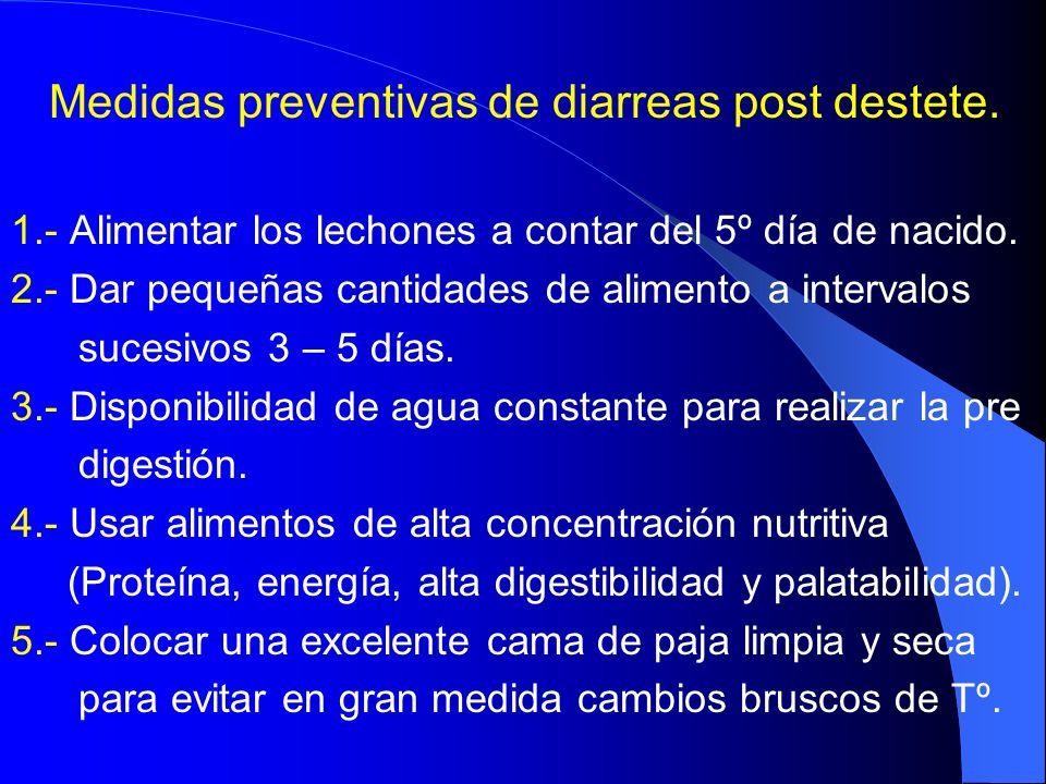 Medidas preventivas de diarreas post destete. 1.- Alimentar los lechones a contar del 5º día de nacido. 2.- Dar pequeñas cantidades de alimento a inte