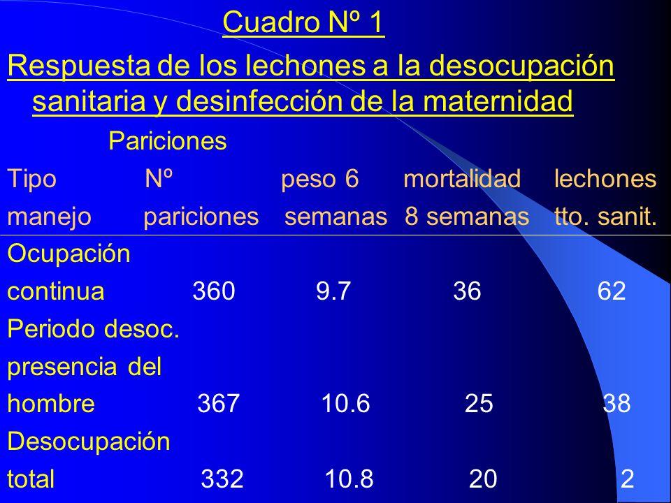 Cuadro Nº 1 Respuesta de los lechones a la desocupación sanitaria y desinfección de la maternidad Pariciones Tipo Nº peso 6 mortalidad lechones manejo