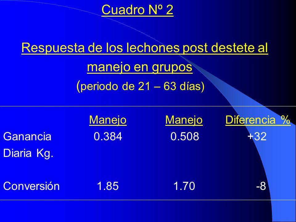 Cuadro Nº 2 Respuesta de los lechones post destete al manejo en grupos ( periodo de 21 – 63 días) Manejo Manejo Diferencia % Ganancia 0.384 0.508 +32 Diaria Kg.