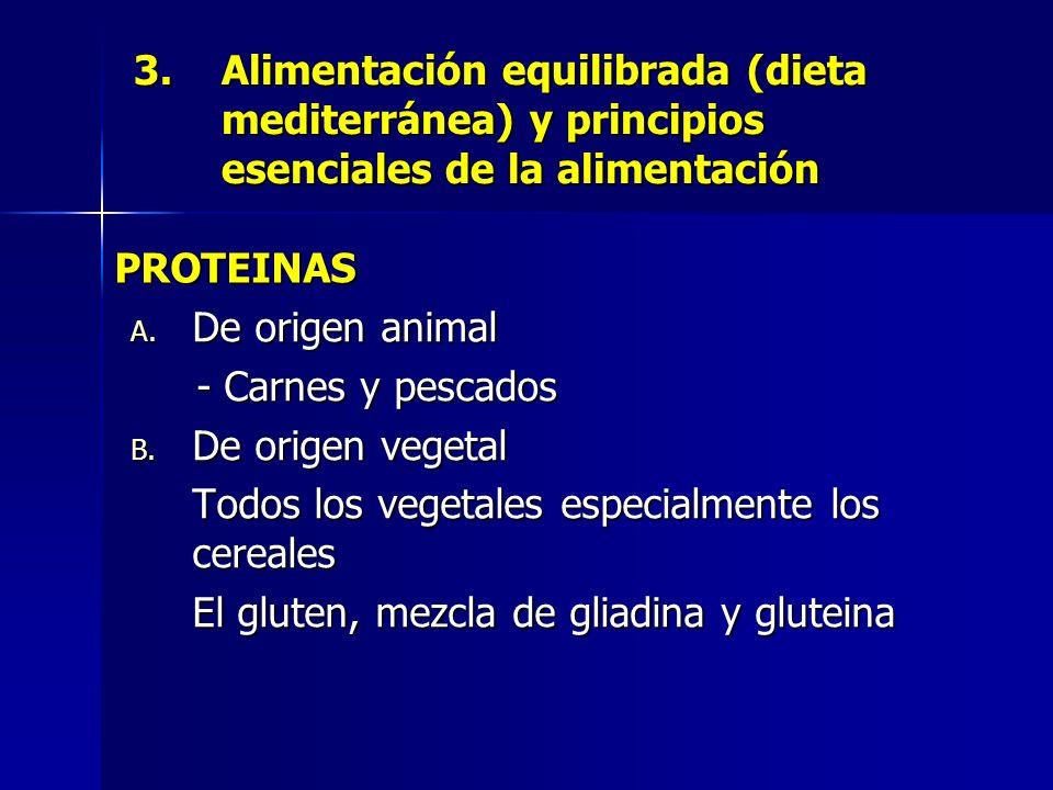 3.Alimentación equilibrada (dieta mediterránea) y principios esenciales de la alimentación A. De origen animal - Carnes y pescados B. De origen vegeta