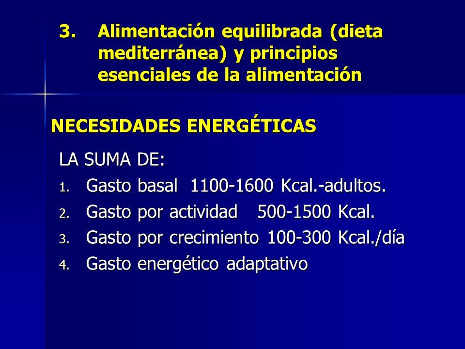 3.Alimentación equilibrada (dieta mediterránea) y principios esenciales de la alimentación LA SUMA DE: 1. Gasto basal 1100-1600 Kcal.-adultos. 2. Gast