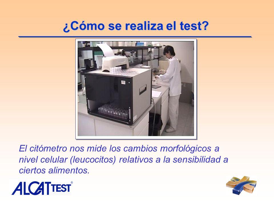 ¿Cómo se realiza el test? El citómetro nos mide los cambios morfológicos a nivel celular (leucocitos) relativos a la sensibilidad a ciertos alimentos.