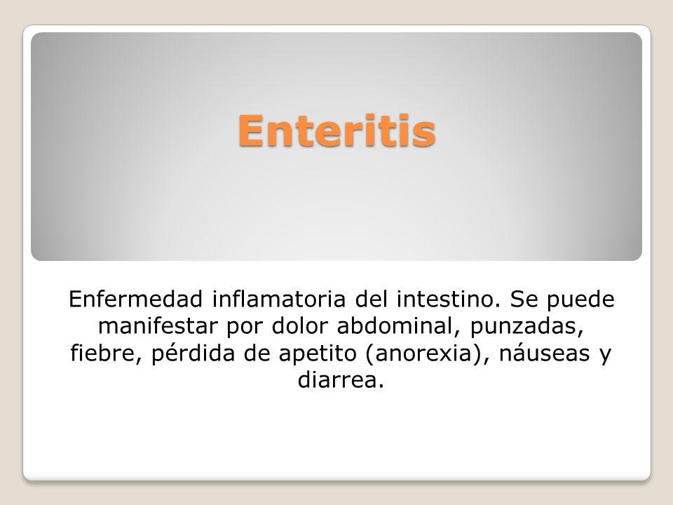 Enteritis Enfermedad inflamatoria del intestino. Se puede manifestar por dolor abdominal, punzadas, fiebre, pérdida de apetito (anorexia), náuseas y d