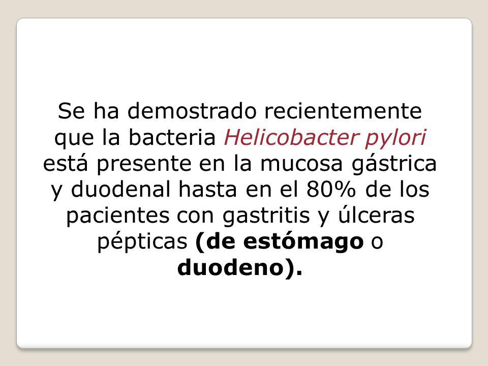 Se ha demostrado recientemente que la bacteria Helicobacter pylori está presente en la mucosa gástrica y duodenal hasta en el 80% de los pacientes con