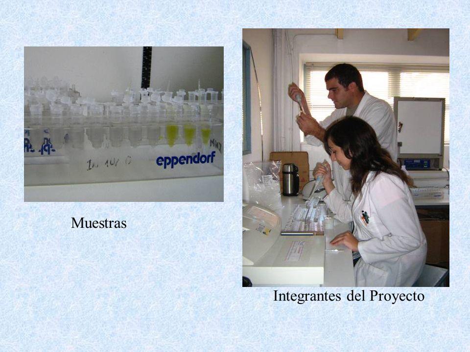 Fuente de certificación de los productos que forman el Listado de Alimentos 2004, editado por la Asociación Celíaca Argentina Fuente de certificación para alimentos fiscalizados por la Asociación Celíaca Argentina Período: junio 2004 - mayo 2005.