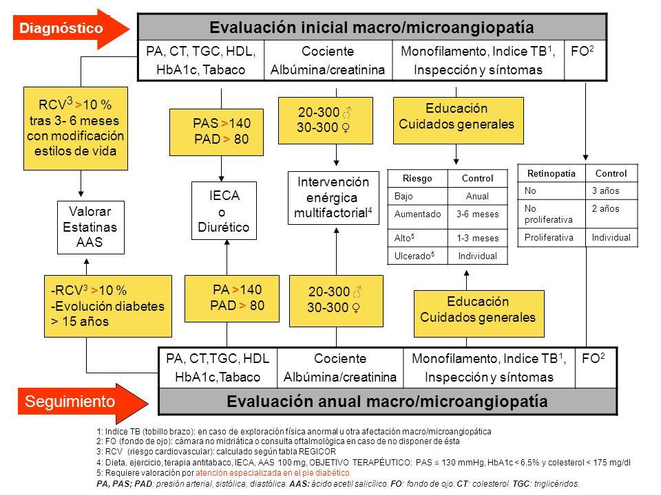 Evaluación inicial macro/microangiopatía PA, CT, TGC, HDL, HbA1c, Tabaco Cociente Albúmina/creatinina Monofilamento, Indice TB 1, Inspección y síntoma