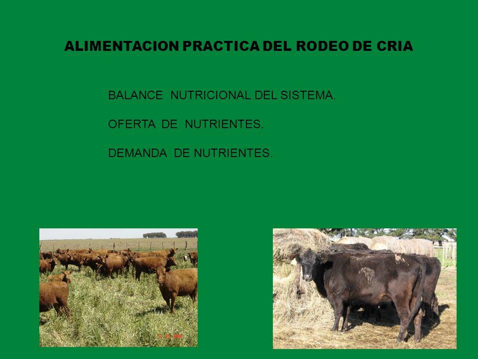 BALANCE NUTRICIONAL DEL SISTEMA. OFERTA DE NUTRIENTES. DEMANDA DE NUTRIENTES. ALIMENTACION PRACTICA DEL RODEO DE CRIA