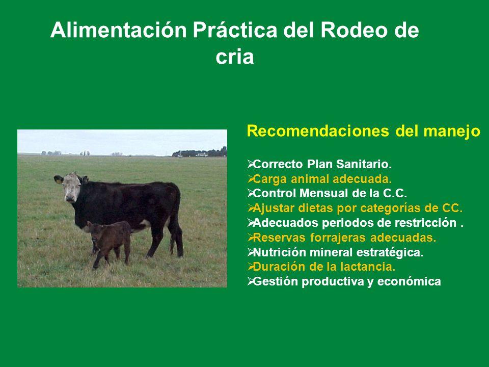 Alimentación Práctica del Rodeo de cria Recomendaciones del manejo Correcto Plan Sanitario. Carga animal adecuada. Control Mensual de la C.C. Ajustar