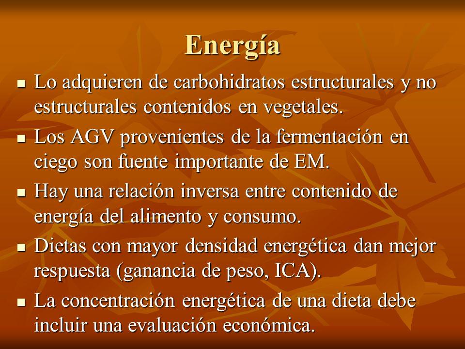 Energía Lo adquieren de carbohidratos estructurales y no estructurales contenidos en vegetales. Lo adquieren de carbohidratos estructurales y no estru