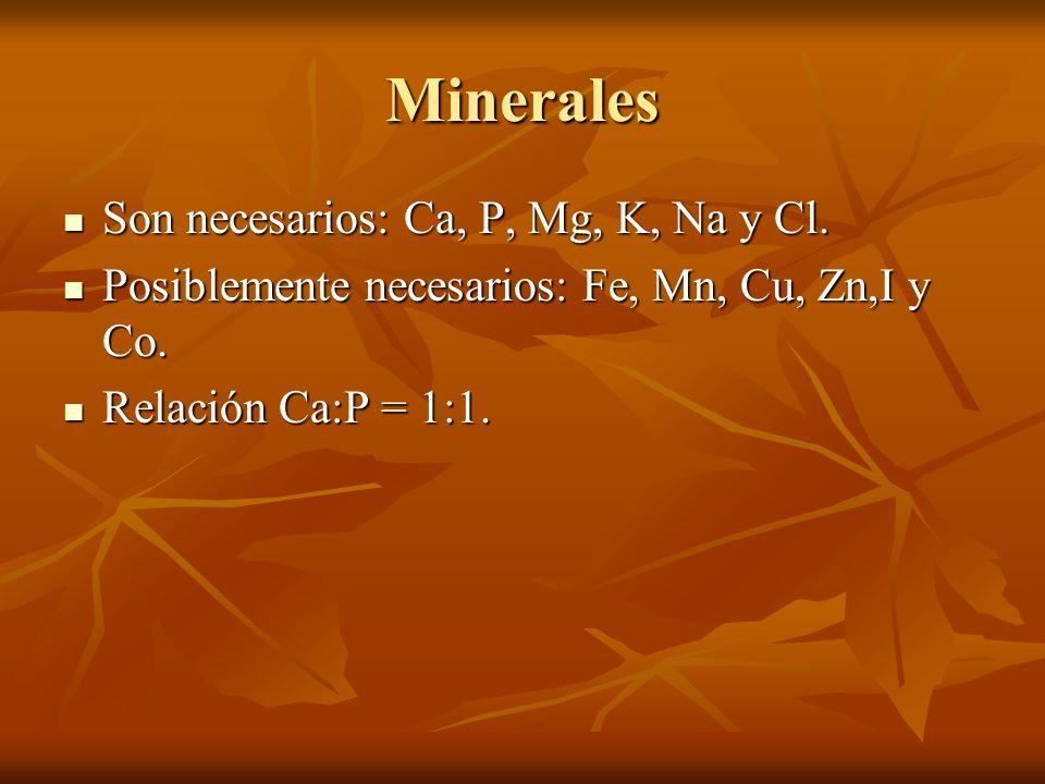 Minerales Son necesarios: Ca, P, Mg, K, Na y Cl. Son necesarios: Ca, P, Mg, K, Na y Cl. Posiblemente necesarios: Fe, Mn, Cu, Zn,I y Co. Posiblemente n