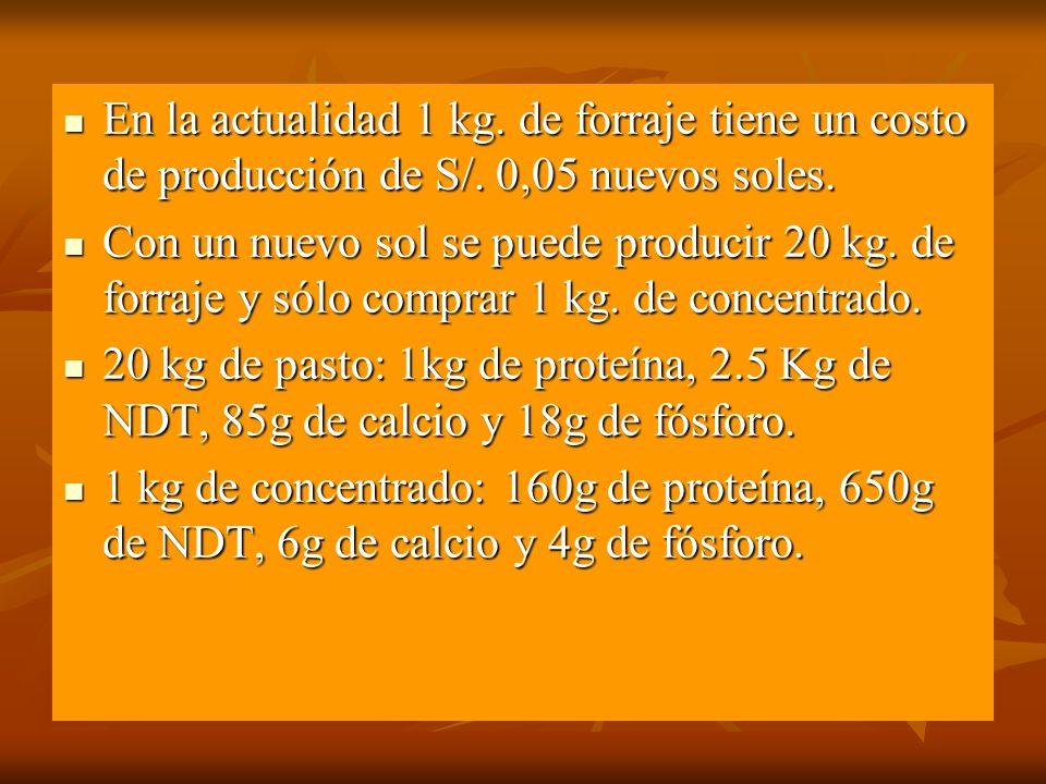 En la actualidad 1 kg. de forraje tiene un costo de producción de S/. 0,05 nuevos soles. En la actualidad 1 kg. de forraje tiene un costo de producció