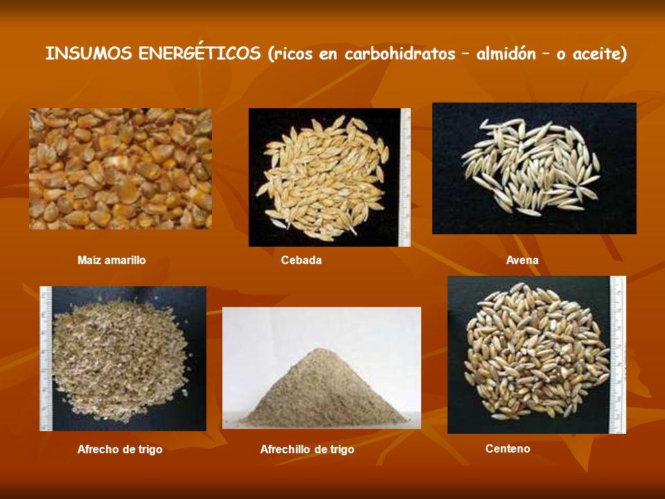Maíz amarilloCebadaAvena Afrecho de trigo Afrechillo de trigo Centeno INSUMOS ENERGÉTICOS (ricos en carbohidratos – almidón – o aceite)