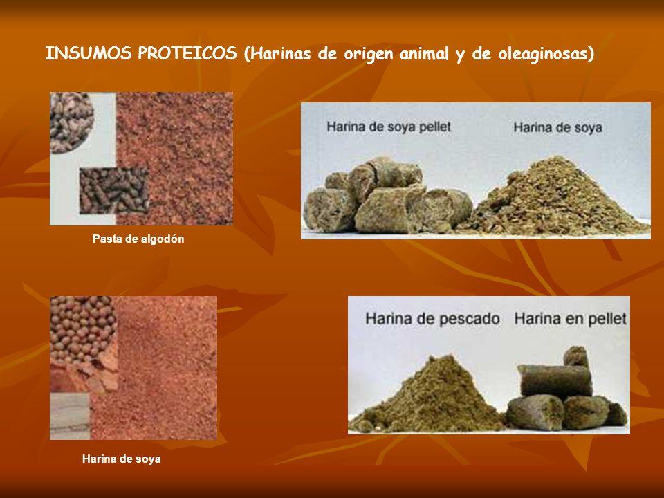 Pasta de algodón Harina de soya INSUMOS PROTEICOS (Harinas de origen animal y de oleaginosas)