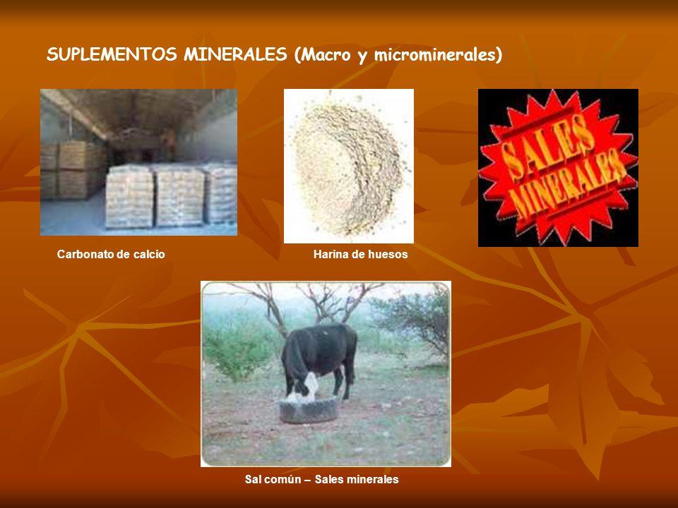Carbonato de calcio Sal común – Sales minerales Harina de huesos SUPLEMENTOS MINERALES (Macro y microminerales)