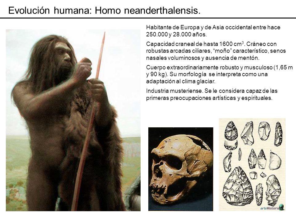 Evolución humana: hipótesis.