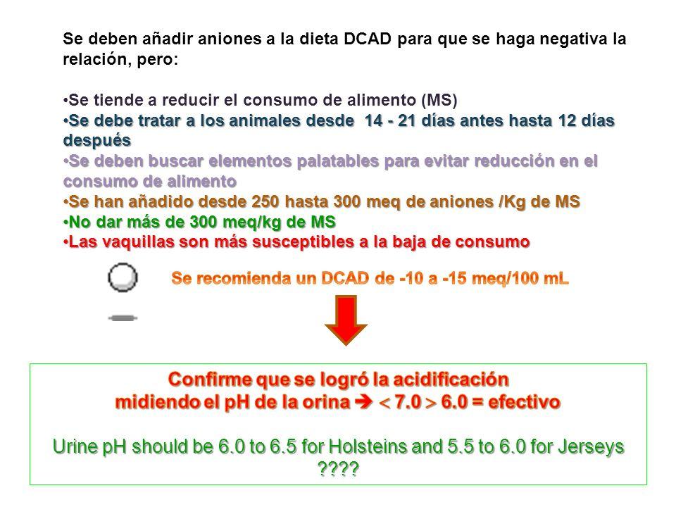 Se deben añadir aniones a la dieta DCAD para que se haga negativa la relación, pero: Se tiende a reducir el consumo de alimento (MS) Se debe tratar a