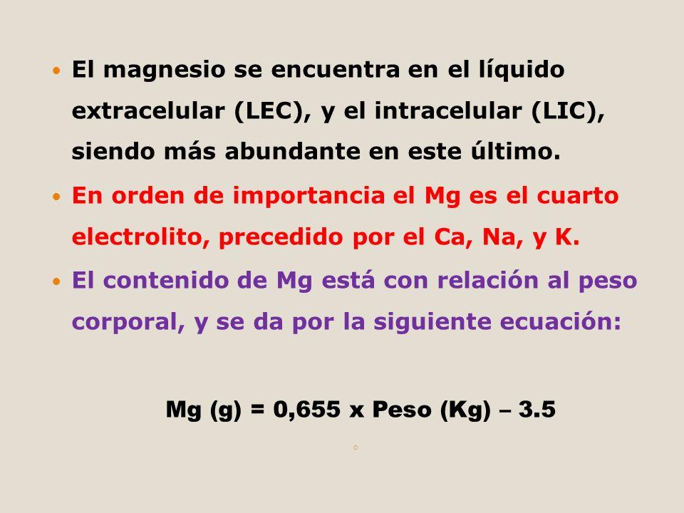 El magnesio se encuentra en el líquido extracelular (LEC), y el intracelular (LIC), siendo más abundante en este último. En orden de importancia el Mg