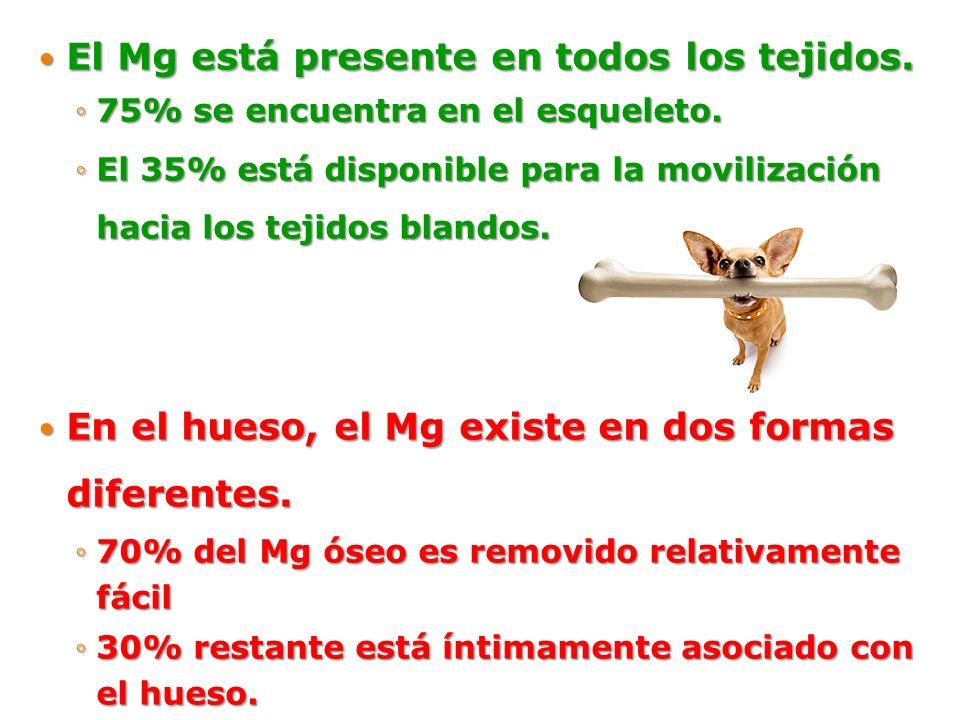 El Mg está presente en todos los tejidos. El Mg está presente en todos los tejidos. 75% se encuentra en el esqueleto.75% se encuentra en el esqueleto.