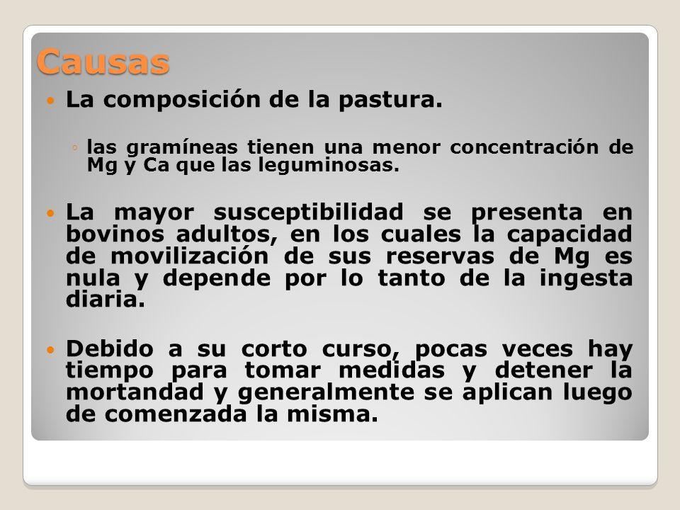 Causas La composición de la pastura. las gramíneas tienen una menor concentración de Mg y Ca que las leguminosas. La mayor susceptibilidad se presenta