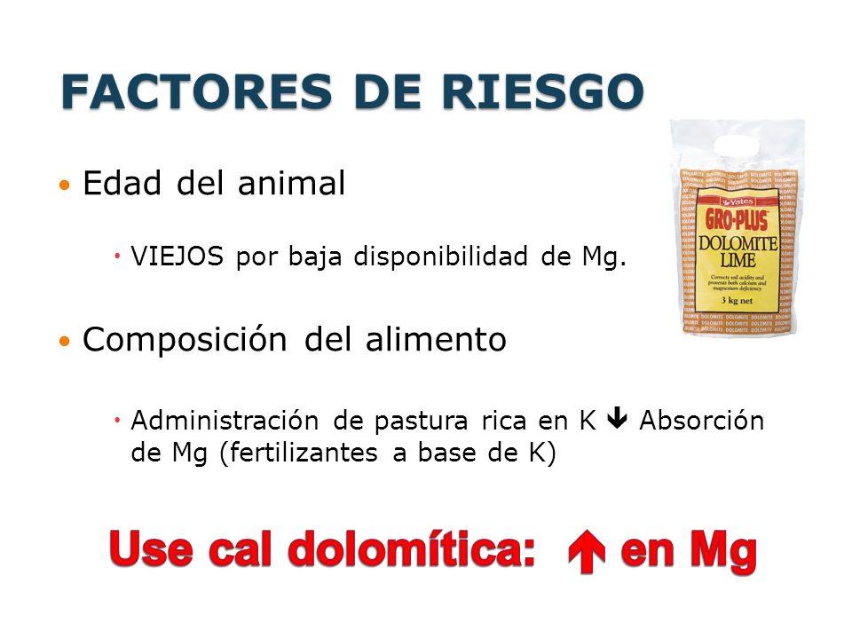 FACTORES DE RIESGO Edad del animal VIEJOS por baja disponibilidad de Mg. Composición del alimento Administración de pastura rica en K Absorción de Mg