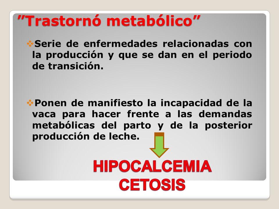 Trastornó metabólico Serie de enfermedades relacionadas con la producción y que se dan en el periodo de transición. Ponen de manifiesto la incapacidad