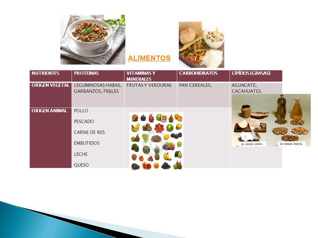 NUTRIENTESPROTEINAS VITAMINAS Y MINERALES CARBOHIDRATOSLÍPÍDOS (GRASAS) ORIGEN VEGETAL LEGUMINOSAS HABAS, GARBANZOS, FRIJLES FRUTAS Y VERDURASPAN CERE