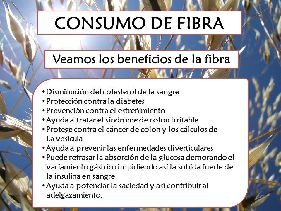 CONSUMO DE FIBRA Disminución del colesterol de la sangre Protección contra la diabetes Prevención contra el estreñimiento Ayuda a tratar el síndrome d