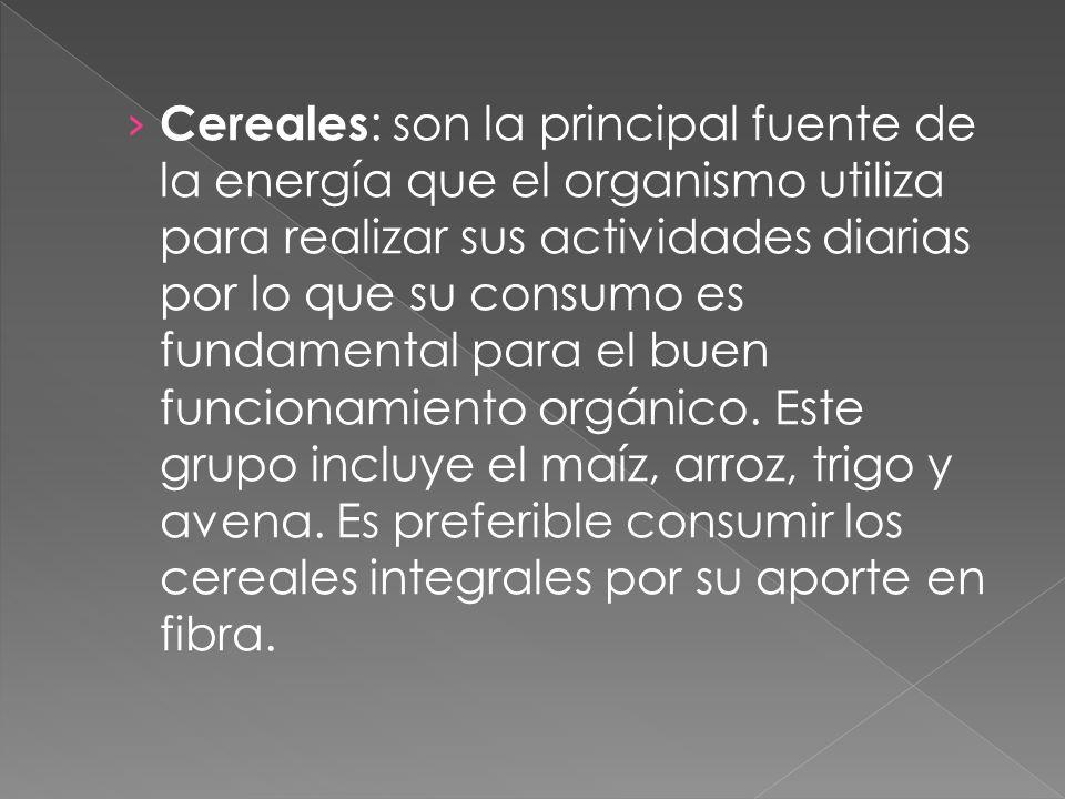 Cereales : son la principal fuente de la energía que el organismo utiliza para realizar sus actividades diarias por lo que su consumo es fundamental p