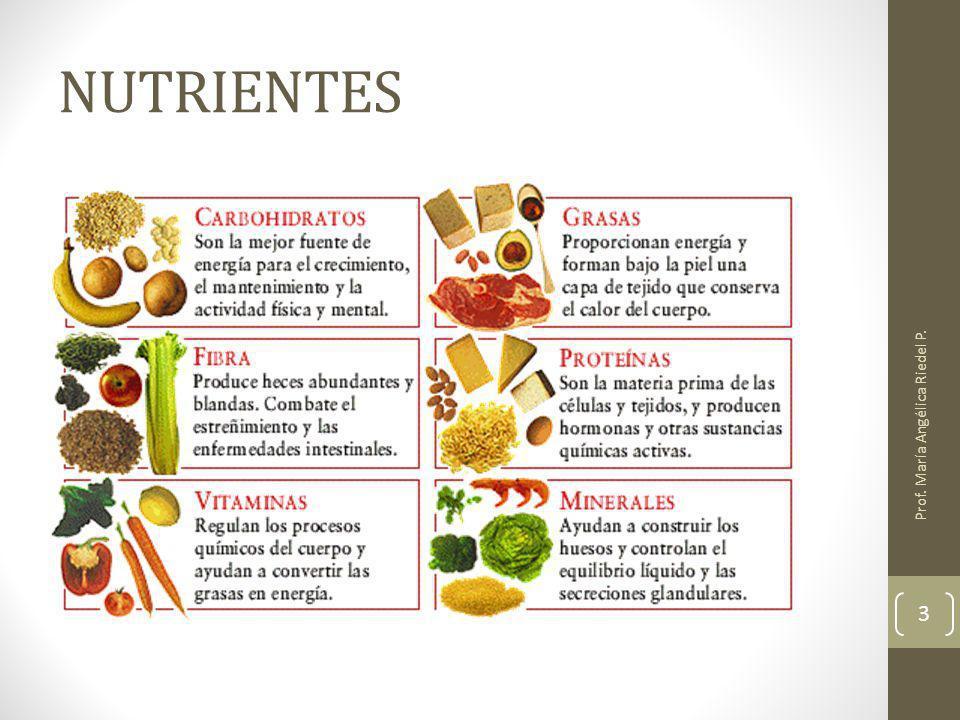 NUTRIENTES Prof. María Angélica Riedel P. 3