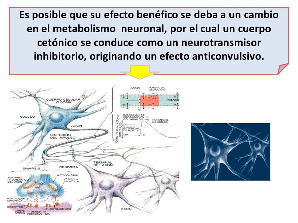 Es posible que su efecto benéfico se deba a un cambio en el metabolismo neuronal, por el cual un cuerpo cetónico se conduce como un neurotransmisor in