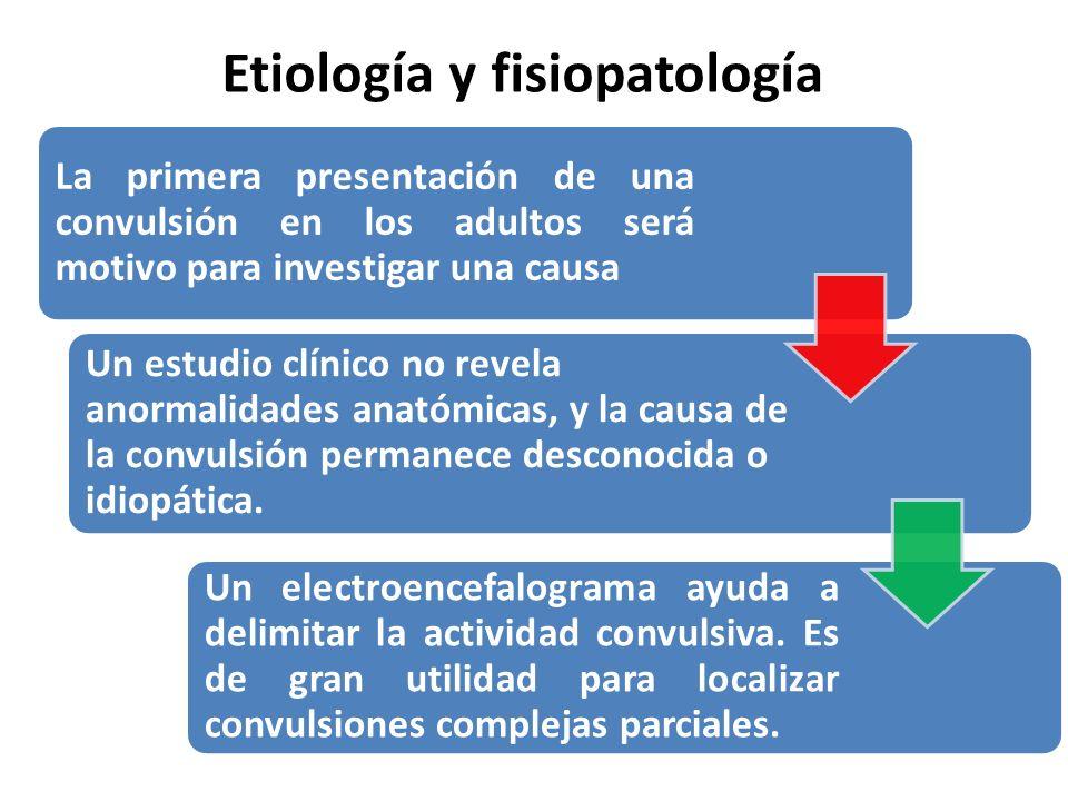 Etiología y fisiopatología La primera presentación de una convulsión en los adultos será motivo para investigar una causa Un estudio clínico no revela