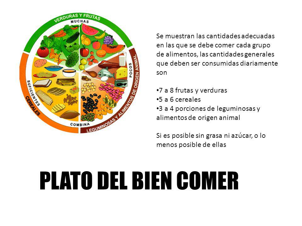 PLATO DEL BIEN COMER Se muestran las cantidades adecuadas en las que se debe comer cada grupo de alimentos, las cantidades generales que deben ser con