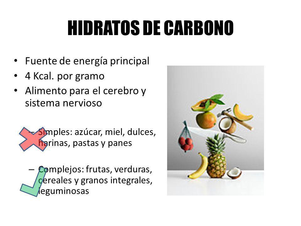 HIDRATOS DE CARBONO Fuente de energía principal 4 Kcal. por gramo Alimento para el cerebro y sistema nervioso – Simples: azúcar, miel, dulces, harinas