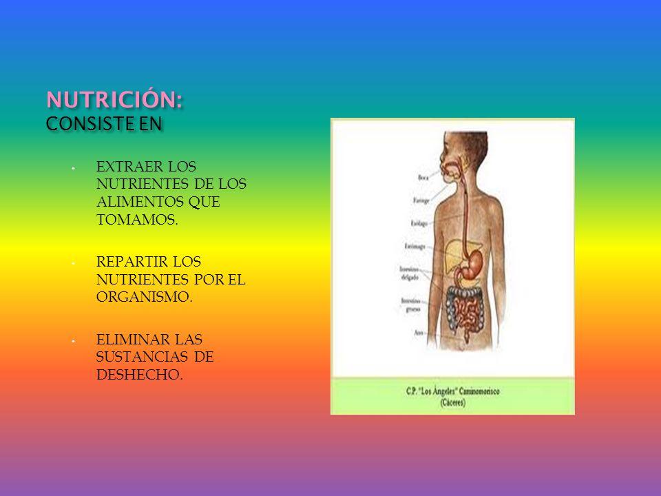 NUTRICIÓN: CONSISTE EN EXTRAER LOS NUTRIENTES DE LOS ALIMENTOS QUE TOMAMOS. REPARTIR LOS NUTRIENTES POR EL ORGANISMO. ELIMINAR LAS SUSTANCIAS DE DESHE