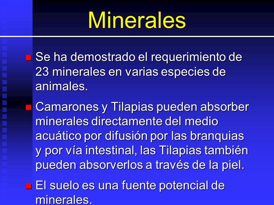 Minerales Se ha demostrado el requerimiento de 23 minerales en varias especies de animales. Se ha demostrado el requerimiento de 23 minerales en varia