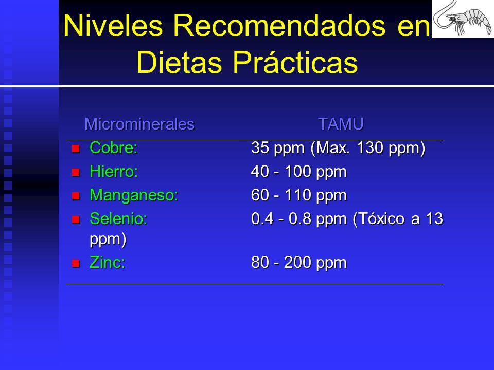 Niveles Recomendados en Dietas Prácticas MicromineralesTAMU MicromineralesTAMU Cobre: 35 ppm (Max. 130 ppm) Cobre: 35 ppm (Max. 130 ppm) Hierro: 40 -