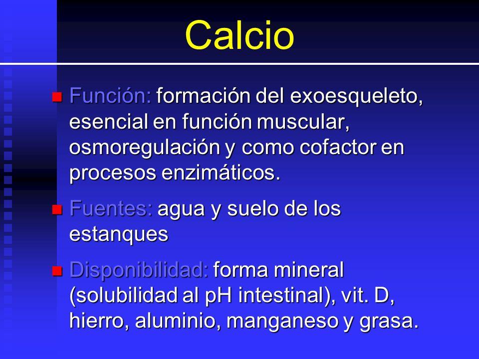 Calcio Función: formación del exoesqueleto, esencial en función muscular, osmoregulación y como cofactor en procesos enzimáticos. Función: formación d