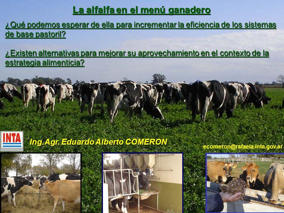 Ley de los rendimientos decrecientes CONSUMOCONSUMO * Asignación de Pasto (kgMS/v/d) Alfalfa (4-5 cm del suelo) 1,75 CME 5 ecuaciones (nivel del suelo) 2,4 CME Relación entre el Consumo y la Asignación de pasto Consumo = 18,4 + (1 – e -0,0466 x AP ) Syx = 0,99 R2= 0,87