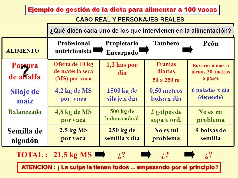 Ejemplo de gestión de la dieta para alimentar a 100 vacas 9 bolsas de semilla No es mi problema 250 kg de semilla x día 2,5 kg MS por vaca No es mi pr