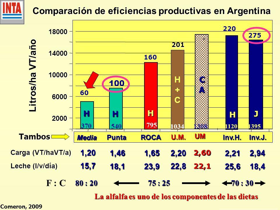 Comparación de eficiencias productivas en Argentina 2000 6000 10000 14000 18000 Tambos Carga (VT/haVT/a) Leche (l/v/día) Litros/ha VT/año Media 601,20