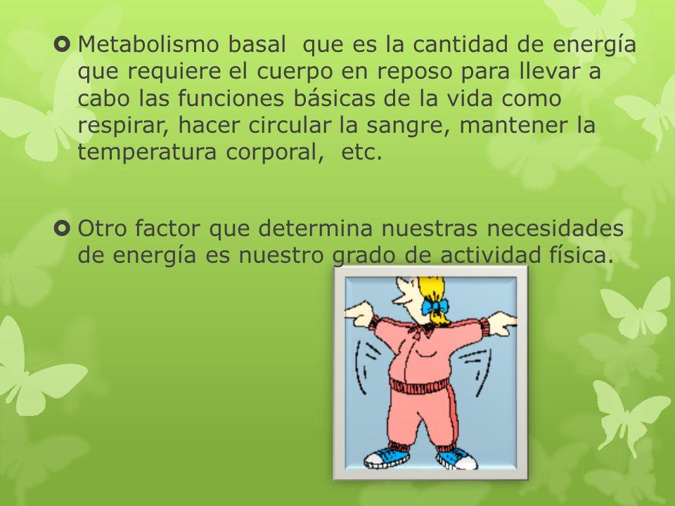 La obesidad consiste en una acumulación excesiva de grasa en el cuerpo que se presenta a partir de un 20% sobre el máximo peso recomendado.