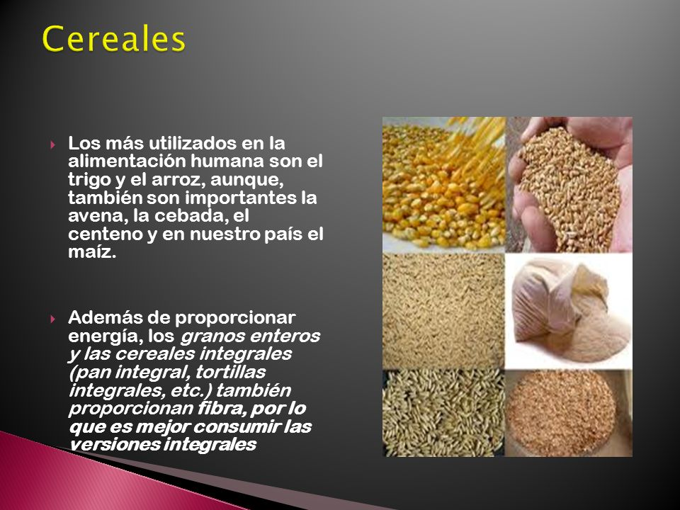 Los más utilizados en la alimentación humana son el trigo y el arroz, aunque, también son importantes la avena, la cebada, el centeno y en nuestro país el maíz.